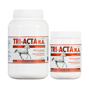 Integricare TRI-ACTA H.A. for Horses