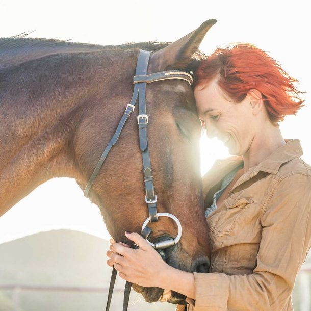 Equine Supplements for Horses
