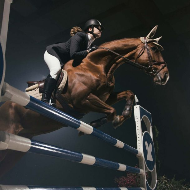 Equine Supplements for Sport horses