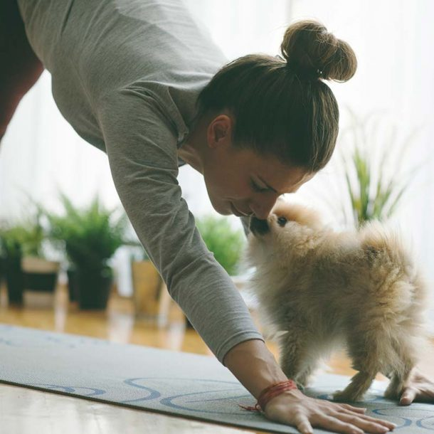 Doing Yoga with Your Dog